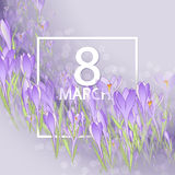 Floral frame with crocuses and  snowdrops. Purple background Stock Photos