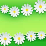 Floral frame with 3d chamomile flower. Stylish floral green background. Abstract beautiful spring or summer background with sheet of paper - place for text Royalty Free Stock Images
