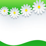 Floral frame with 3d flower chamomile Royalty Free Stock Photography