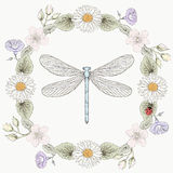 Floral frame and dragonfly vintage engraving style Stock Images