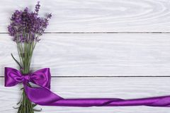 Floral frame from flowers of lavender. And purple ribbon Stock Photography