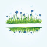 Floral frame with grass Royalty Free Stock Photography