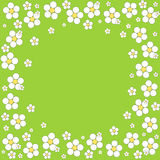Floral frame on a green background. Vector. Illustration Stock Illustration
