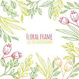 Floral frame with hand drawn flowers and plants Royalty Free Stock Photography