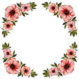 Floral frame illustration. Beautiful red flowers with green leaves. Round pattern on white background with space for your text. Floral frame illustration Royalty Free Stock Image