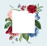 Floral frame invitation card design royalty free illustration