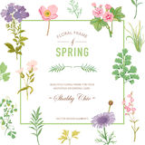 Floral Frame. Invitation Card. Wedding Card. Baby Shower Card Stock Image