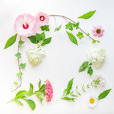 Floral frame with ivy, hibiscus and hydrangea flowers.  Top view. Floral frame with ivy, hibiscus and hydrangea flowers on light background.  Top view, flat lay Royalty Free Stock Image