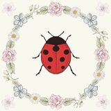 Floral frame and ladybird Stock Image