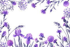 Floral Frame with lilac wildflowers. Royalty Free Stock Photography