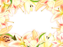 Floral frame with lily flowers and green leaf Stock Photo