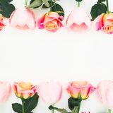 Floral frame made of roses and tulips flowers and green leaves on white background. Flat lay, top view. Flower background stock image