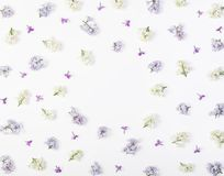 Floral frame made of spring lilac flowers isolated on white background. Top view with copy space. Flat lay Royalty Free Stock Images