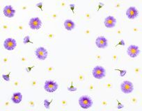 Floral frame made of violet asters and chamomile on white background. Flat lay. Top view with copy space stock photos