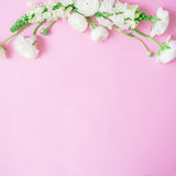 Floral frame made of white flowers on gentle pink background. Flat lay, top view. Flower pattern. Floral frame made of white flowers on gentle pink background Royalty Free Stock Image