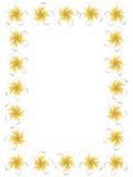 White frangipani flowers frame Royalty Free Stock Photos