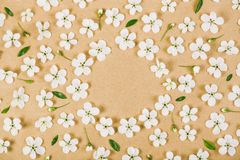 Floral frame made of white spring flowers, buds and green leaves on brown paper background. Flat lay. Top view Stock Photos