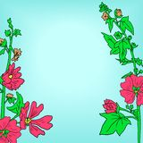 Floral frame with mallow flowers Stock Image