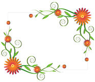 Floral frame Royalty Free Stock Images