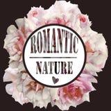 Floral frame. Ovale frame with beatiful roses stock illustration