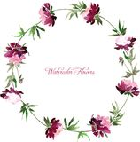 Floral frame with peony flowers Royalty Free Stock Photography