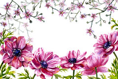 Floral Frame with pink flowers. Stock Photos