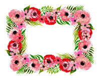 Floral frame with pink flowers Royalty Free Stock Photography