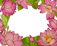 Floral frame of pink lotus flowers. Water lily. Vector background Royalty Free Stock Images