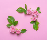 Floral frame with pink roses on a pink background. Corners borders of flowers. Stock Photos
