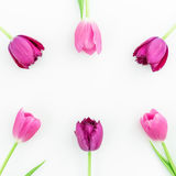 Floral frame with pink tulip flowers on white background. Flat lay. Top view. Valentines Day background. Royalty Free Stock Photo