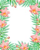 Floral frame with pink watercolor orchids. And green palm branch. Hand drawn tropical background Stock Photo