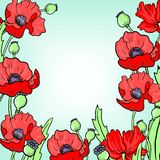 Floral frame with poppy flowers Royalty Free Stock Photography