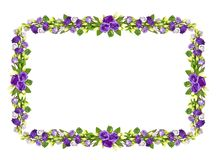 Floral frame with purple eustoma flowers. Isolated on white background. Flat lay. Top view Royalty Free Stock Image