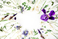 Floral frame with purple iris flower, lily of the valley, branches, leaves and petals Stock Photos