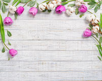 Floral frame with purple tulips. Floral frame with tulips and cotton flower over wood Royalty Free Stock Photo