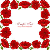 Floral frame with red poppies. Vector floral frame with red poppies Stock Images