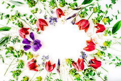 Floral frame with red tulips, yellow flowers, purple iris, branches, leaves and petals isolated on white background Stock Image