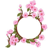 Floral Frame With Sakura Royalty Free Stock Images