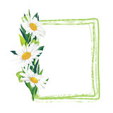Floral frame set with flower bouquet. Design floral elements Royalty Free Stock Photography