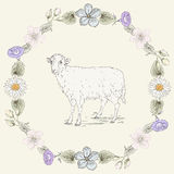 Floral frame and sheep Vintage engraving style Royalty Free Stock Photos