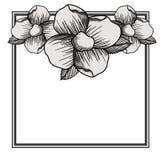 Floral frame square decoration. Vector illustration design Royalty Free Stock Photo