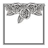 Floral frame square decoration. Vector illustration design Stock Images