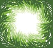 Floral frame. Tropical green leaves summer holiday background. Floral swirl leaf resort pattern. Green leaves frame isolated on white background Stock Image