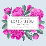 Vector illustration of a beatiful floral frame with pink peonies flowers, petals and leaves for wedding, anniversary, birthday, pa. Rty. Design for banner royalty free illustration