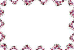 Floral Frame In Watercolor Royalty Free Stock Image