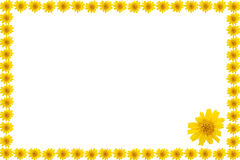Floral frame. On white background Stock Illustration