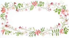 Floral frame. On white background Royalty Free Stock Image