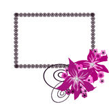 Floral frame with white flowers background Stock Photo