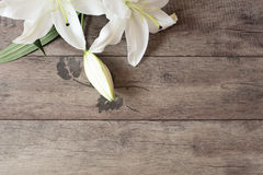 Floral frame with white lilies on wooden background. Styled marketing photography. Copy space. Wedding, gift card Royalty Free Stock Image