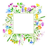 Floral frame of a wild flowers and herbs on a white background. Buttercup, cornflower,clover,bluebell,forget-me-not,vetch,timothy grass,lobelia,snowdrop flowers stock illustration